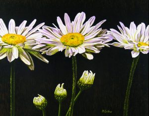 Daisies by Monique Catino